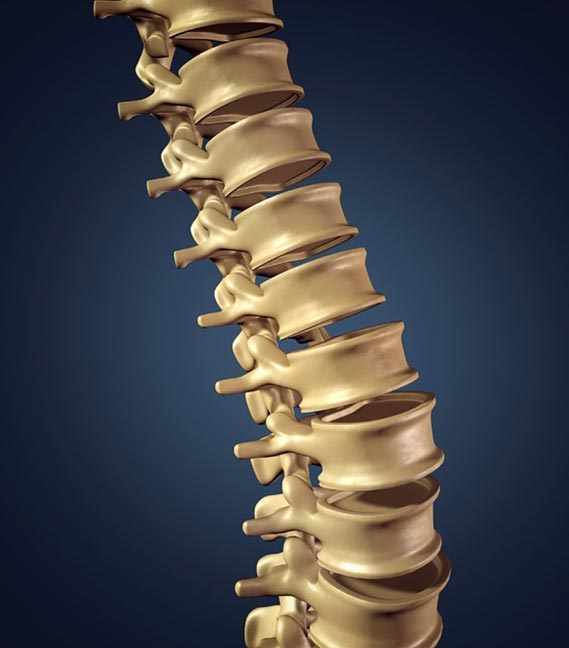 Vertebral Body Augmentation (VBA) Technology Supplier UK