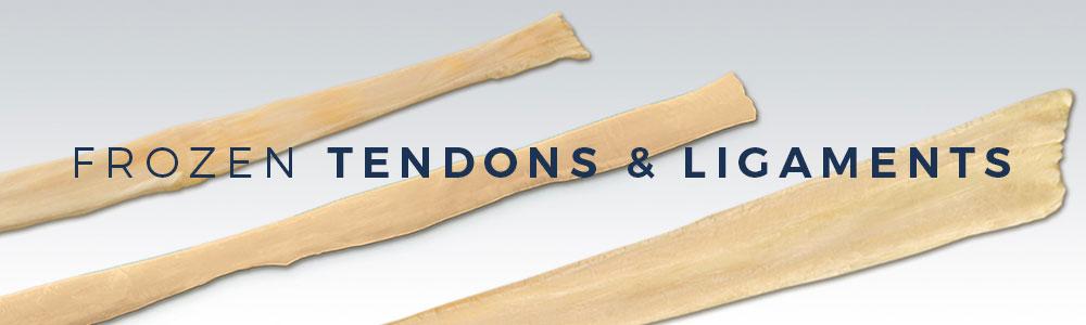Frozen Tendons & Ligaments